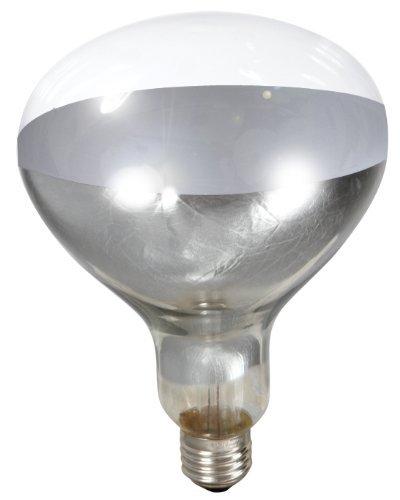 Little Giant Clear Heat Lamp Bulb 250-watt
