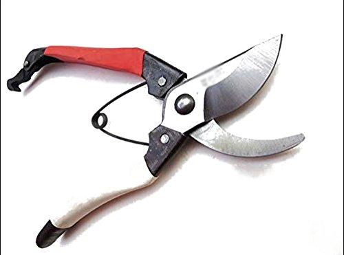 Beautymood Pruning Shears - The Best Professional Bypass Pruneramp Garden Hand Tool Cutters - Aluminum Secateurs