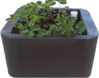 VermiPRO TUUG 16 Planter BoxWorm Bin Combination Dark Brown
