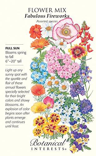 Fabulous Fireworks Annual Flower Seeds - 6 grams