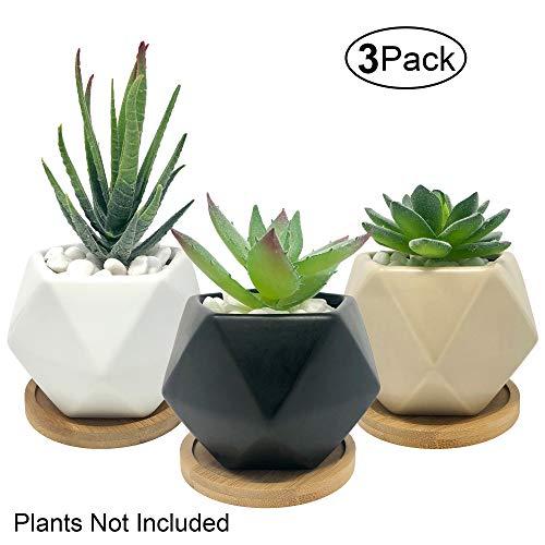 Bluegrid Succulent Pots 3 Inch Ceramic Mini Flower Pots Small Cactus Planter Modern Geometric Design Matte Black White Beige with Bamboo Bases Pack of 3
