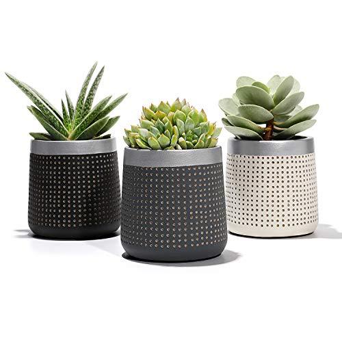 POTEY Succulent Plant Pots Cement Planter - 29 Unglazed Concrete Cactus Pot with Drain Hole - Bonsai Containers for Indoor - Set of 3 Black Grey White