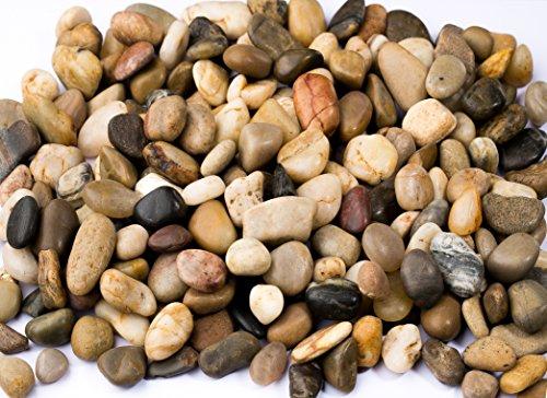 River Rocks Pebbles Outdoor Decorative Stones Natural Polished Gravel For Aquariums Landscaping Vase Fillers Succulent Tillandsia Cactus pot Terrarium Bamboo Plants 22 LB32-Oz