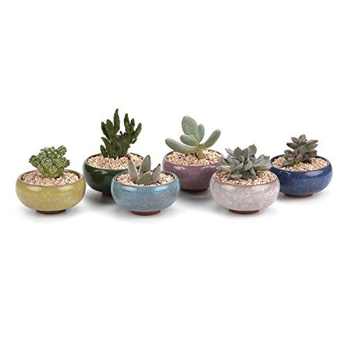 T4u 25 Inch Ceramic Ice Crack Zisha Serial Sucuulent Plant Potcactus Plant Pot Flower Potcontainerplanter