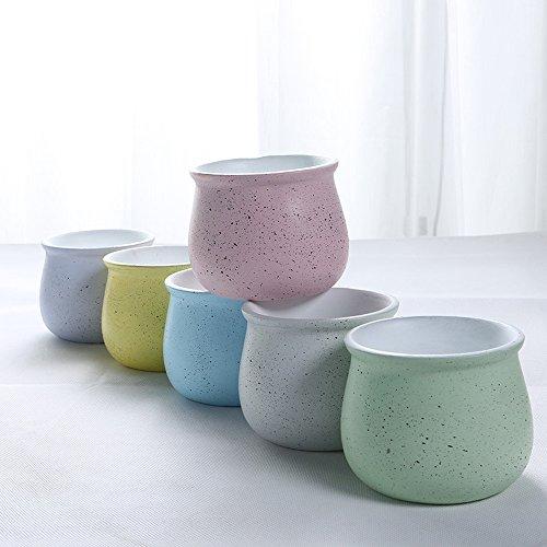 6 Pcs Small Fresh Macarons Department Of Class Cement Coarse Pottery Pots Succulents Simple Ventilation Plants Potted Succulents