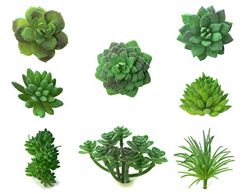 PrettyCo Artificial Succulents Mini Fake Succulents Plastic Plants Artificial Cactus  Un-killable Plants  Crafting Home Decor DIY Gifting More  Eight Pcs Un-Potted Succulents in Green