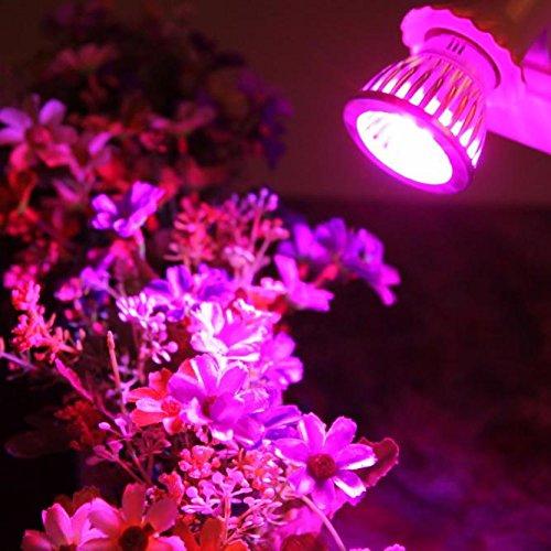 10W Led Grow Light Bulb Full SpectrumPlant Light Bulb 10LED for Indoor Plants E27 Socket Grow Lamp for Hydroponic Indoor Garden Greenhouse Succulent Veg Flower