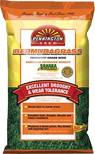 BERMUDAGRASS SEED 5 - 112270 - PENNINGTON SEED OF MADISON G