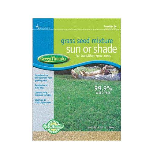 Barenbrug Usa Green Thumb 531515 Premium Tall Fescue Grass Seed 3-pound