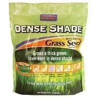 Bonide 60211 Dense Shade Grass Seed 3-Pound