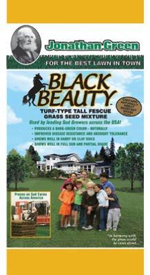 BLACK BEAUTY GRASS SEED MIXTURE