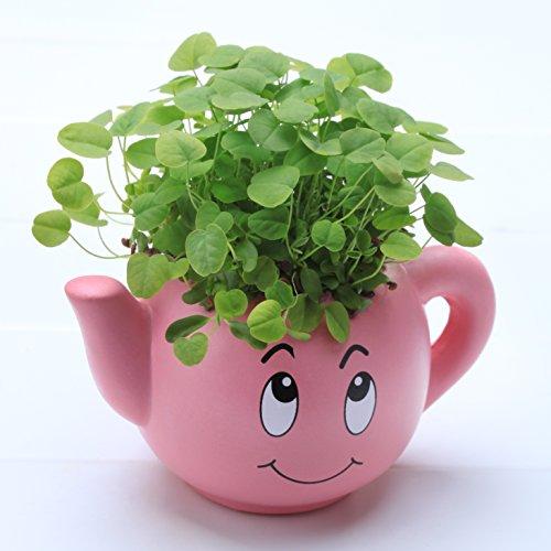 Dshine&reg Kids Grass Head Diy Magic Plant Hair Grow Pot Doll Education Toy Christmas Gift pink