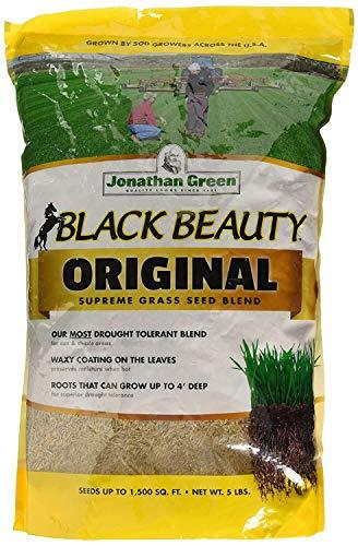 Jonathan Green 10318 Black Beauty Grass Seed Blend Up to 1500 SqFt 5 Lbs