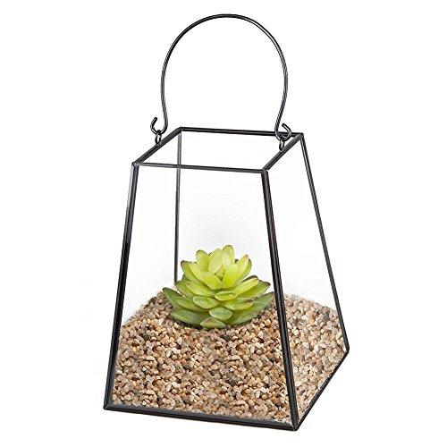 Homeideas Metal Glass Geometric Plant Terrarium Box Tabletop Succulent Planter Box Pot Fern Moss 67 X 53 X 53