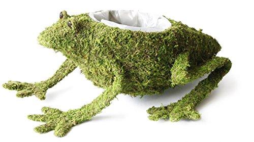 Marshall Home and Garden Moss Frog Planter