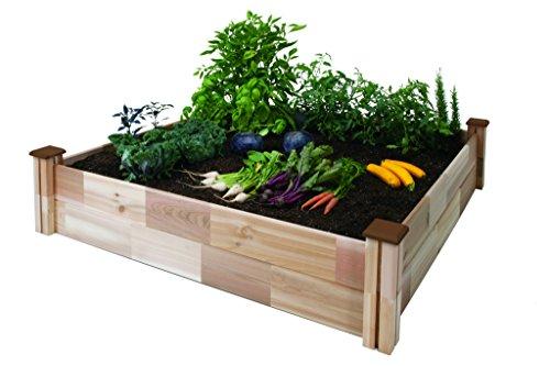 Cedarcraft Raised Garden Bed 49&quot X 49&quot X 12&quot