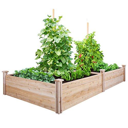 Greenes Fence Cedar Raised Garden Kit 4 Ft X 8 Ft X 14 In