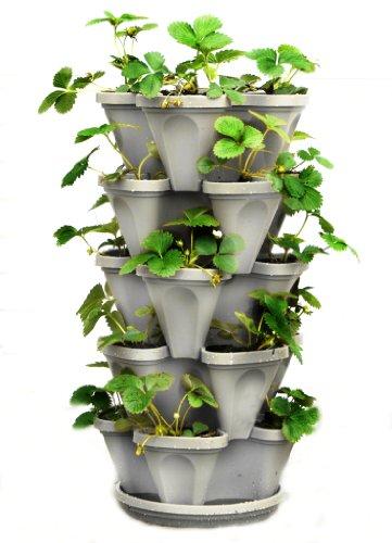 5 Tier Stackable Strawberry Herb Flower And Vegetable Planter  - Vertical Garden Indoor  Outdoor
