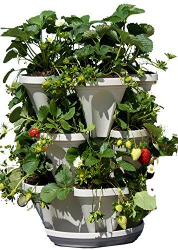 3 Tier Stackable Garden - Indoor  Outdoor Vertical Planter Set - Self Watering Tiers From Top Down - Grow Fresh