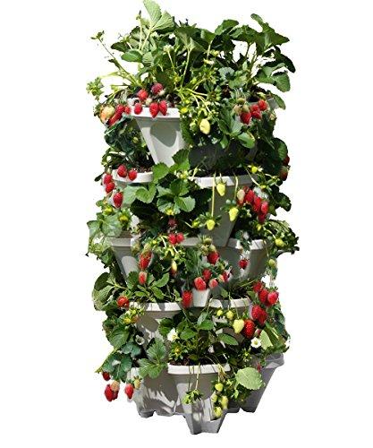 Mr Stacky 5 Tiered Vertical Gardening Planter Indooramp Outdoor