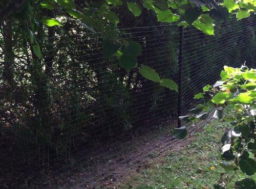 Critterfence 1100 Deer Fence Garden Fencing Dog Fence 8ft X 100ft Roll