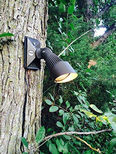 Treewall Mount Bronze Color Phoenix Spot Light By Pinnacle Lights - LED Low Voltage Outdoor Landscape Lighting