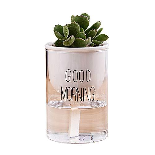 Ceramic Flower Pots Yousun 354 Inch White Ceramic wiht Glasses Mini Round Design Succulent Plant PotCactus Flower Pot Supports Self Watering