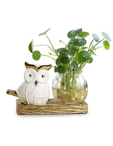 Dahlia Desktop 3 Glass Water Planter Vase Ceramic Owl Stand