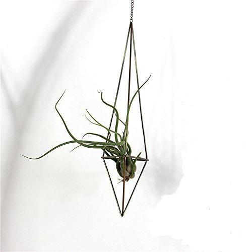 Freestanding Hanging Metal Triangular Shape Tillandsia Air Plant Rack Geometric Himmeli Sculpture height 25cm