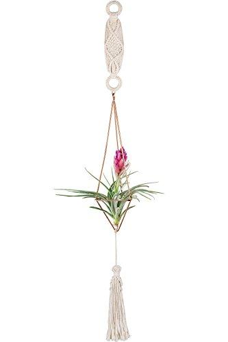 Mkono Macrame Hanging Air Plant Holder Set Himmeli Geometric Decor Gold with Chain