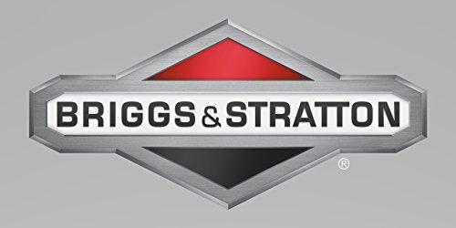 Briggs Stratton Rotor Part  201309GS