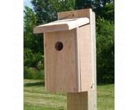 Songbird Essentials SESC1005C Chickadee House