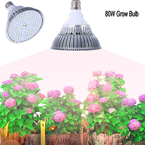 E27 Growing Bulbsgianor 80w Led Grow Lights Full Spectrum Light Bulbs 120pcs Smd 5730 Chips Greenhouse Growing