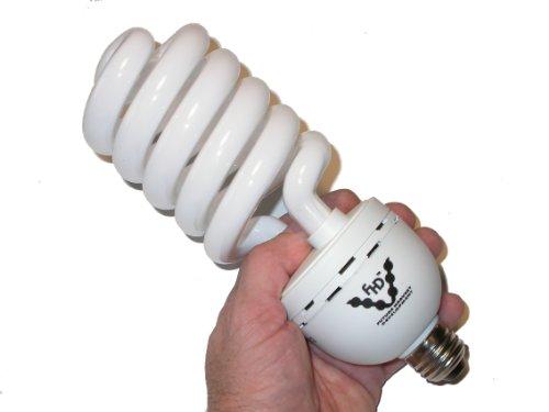 Sun Blaster 0900159 55 Watt Cfl Light Bulb
