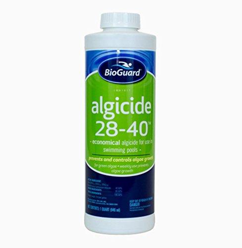 BIoGuard Algicide 28-40 1 qt 1