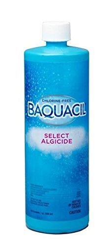 Baquacil Select Algicide - 1 qt