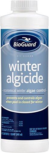 BioGuard Off Season Winter Algicide 40 - Quart