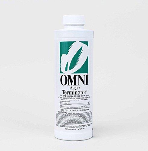 Omni Swimming Pool Algae Terminator Algicide 23500OMN - 1 Quart by Omni