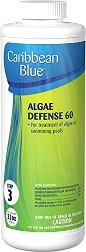 Algae Defense 60 Swimming Pool Algaecidealgicide By Caribbean Blue Poolamp Spa Chemicals