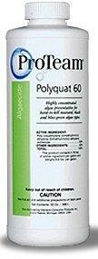 Haviland Usa Proteam 1 Qt Polyquat 60 Algaecide By Proteam