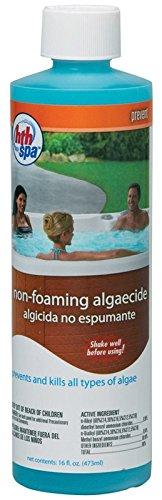 HTH Spa Nonfoaming Algaecide
