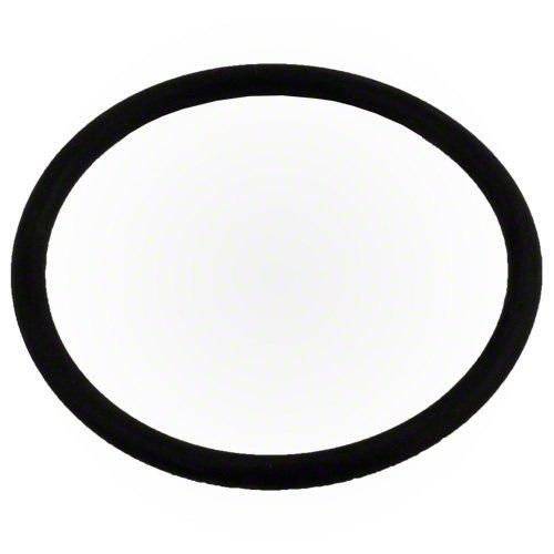 Pentair Diffuser O-Ring IntelliFlo XF 350336