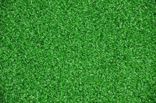 Dean Premium Heavy Duty Indooroutdoor Green Artificial Grass Turf Carpet Rugputting Greendog Mat Size 6