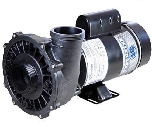Waterway Plastics 3420610-1A Spa Pump Side Discharge