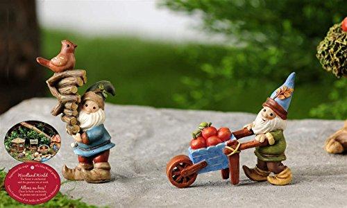 Mini Garden Woodland Gnome Rustic Fairy Statues Miniature Dollhouse Accent