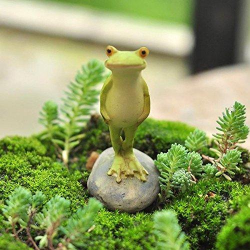Miniature Fairy Garden Terrarium Statue Collection Vivid Figurine Stone Frog