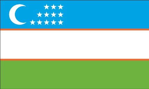 Americas Flag Company FF2X3NUZB1 2-Foot by 3-Foot Nylon Uzbekistan Flag
