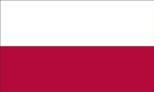 Americas Flag Company FF4X6NPOL1 4-Foot by 6-Foot Nylon Poland Flag