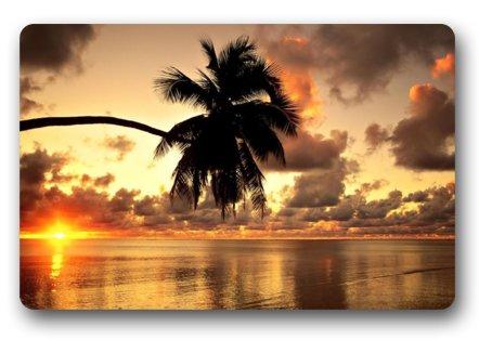 Fabulous Store Custom Beautiful Hawaii Sunset Palm Tree Scenery Fabric Machine-wahable Non-woven Doormat IndoorOutdoor
