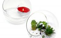 Best-Quality-Glass-Planter-Terrarium-Globe-Candle-Holder-Set-of-Two-3mm-Thick-Borosilicate-Glass-5-1-Diameter-0.jpg